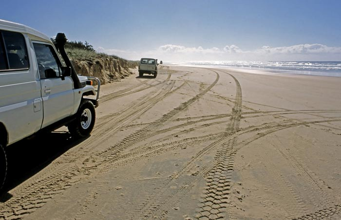 Things-to-do-Fraser-Island-08