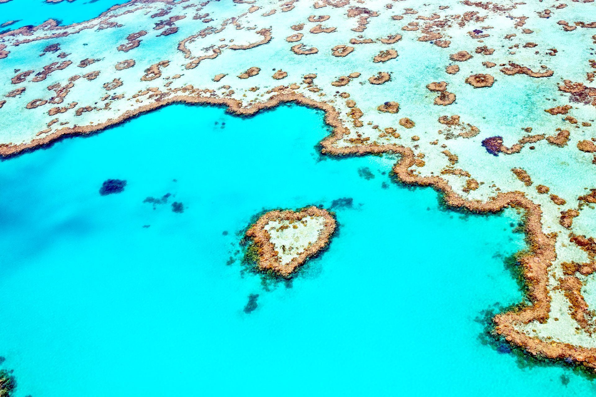 Fraser Island Adventures - Adventure Queensland