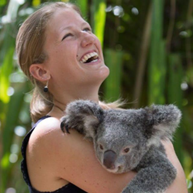 Bungalow Bay Koala Village And Hostel03