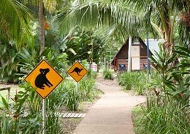Bungalow Bay Koala Village And Hostel05