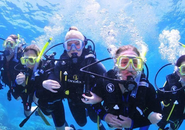 Down Under Cruise Dive05