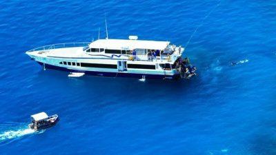 Down Under Cruise Dive08