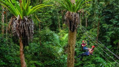 Jungle Surfing04
