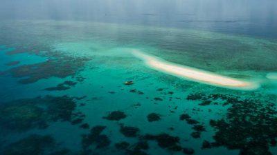 Ocean Safari01