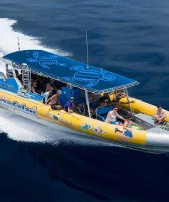 Ocean Safari02