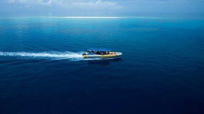 Ocean Safari04