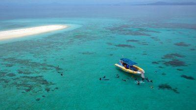 Ocean Safari08