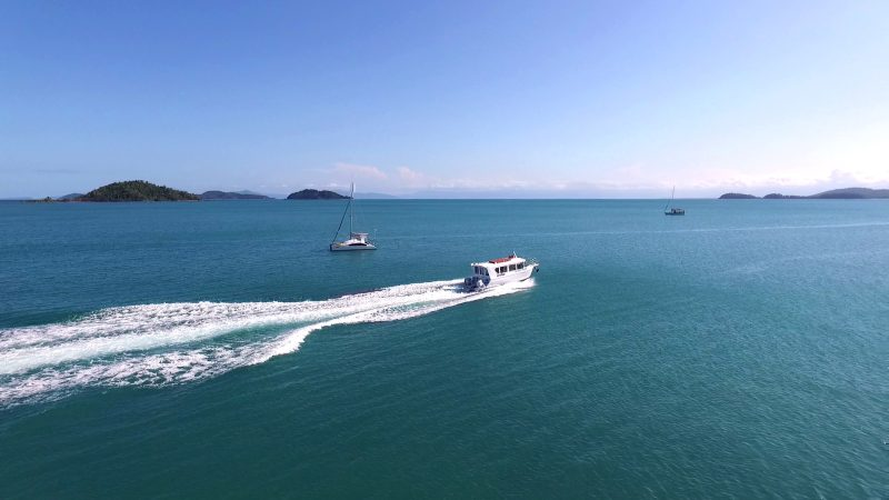 Leaving Dunk