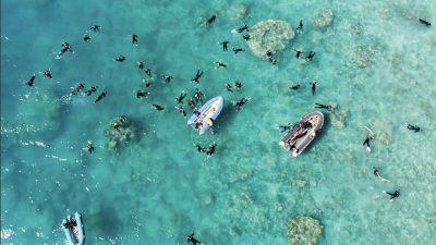 Ac Snorkel Aerial